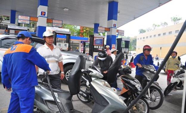 Đào tạo kinh doanh xăng dầu